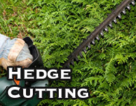 Hedge Cutting
